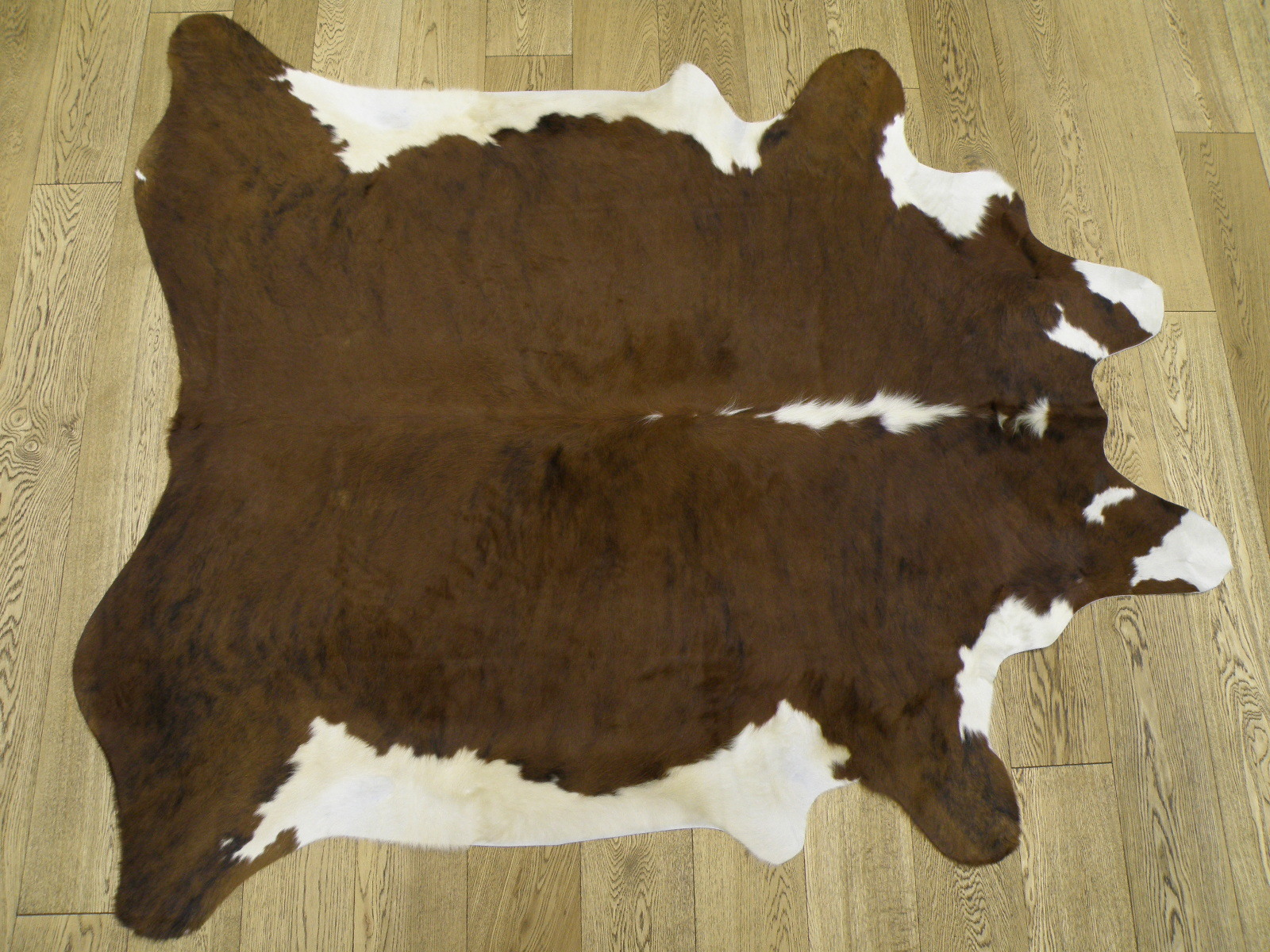 Шкура коровы экзотик с белым животом и хребтом арт.: 24416