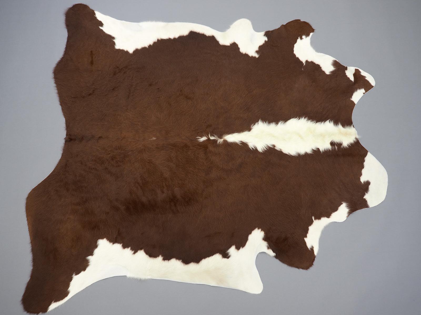 Шкура коричнево белая герефордской породы арт.: 24529