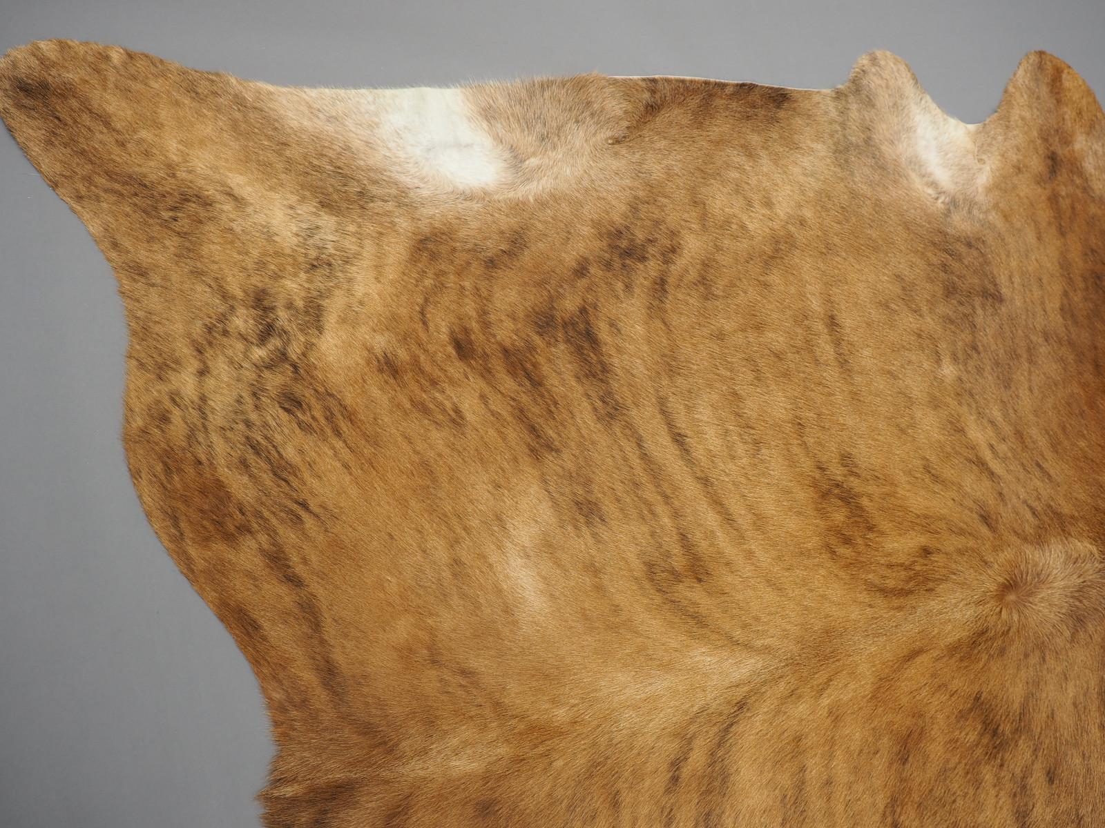 Натуральная шкура коровы экзотическая тигровая арт.: 25413